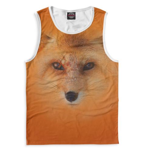 Купить Майка для мальчика Лиса FOX-376028-may-2