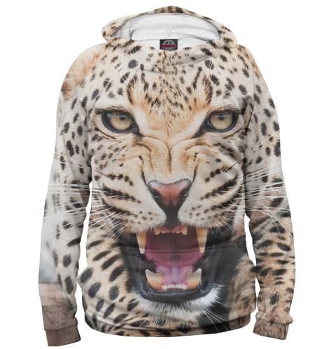 Купить Худи для мальчика Леопард HIS-720693-hud-2