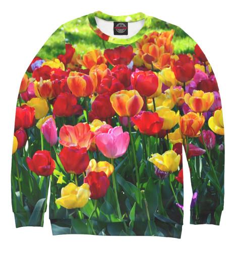 Свитшот Print Bar Тюльпаны харьков сортовые тюльпаны 2014