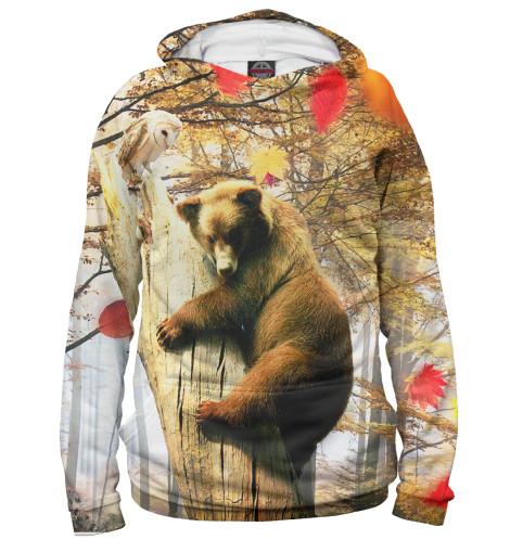 Мужское худи Медведь на дереве