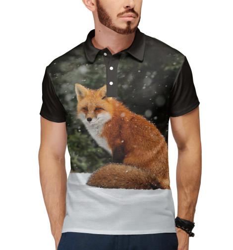 Купить Поло для мальчика Лиса FOX-855439-pol-2