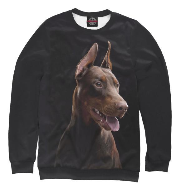 Купить Свитшот для девочек Пес DOG-997876-swi-1