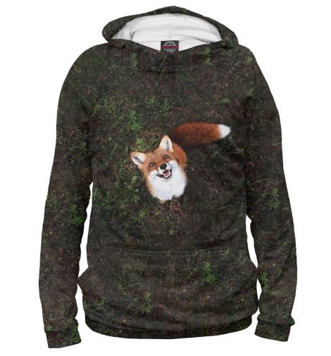 Купить Худи для мальчика Лиса FOX-101123-hud-2