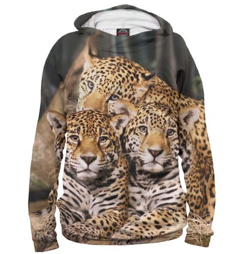 Купить Худи для мальчика Леопард HIS-791864-hud-2