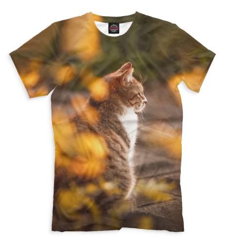 Мужская футболка Осенний кот