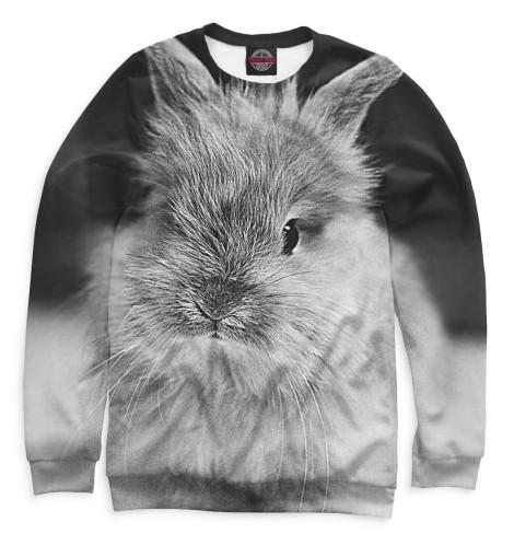 Мужской свитшот Кролики