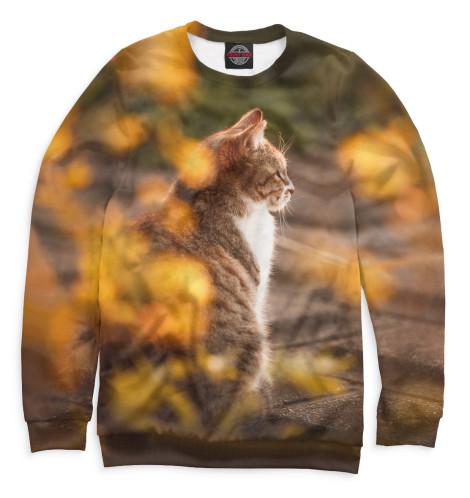Мужской свитшот Осенний кот