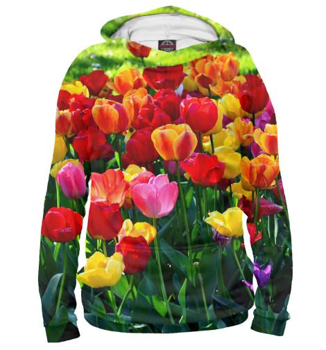 Худи Print Bar Тюльпаны харьков сортовые тюльпаны 2014