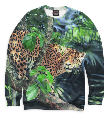 Купить Женский свитшот Леопард HIS-881353-swi-1