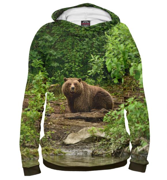 Купить Мужское худи Медведь MED-807652-hud-2