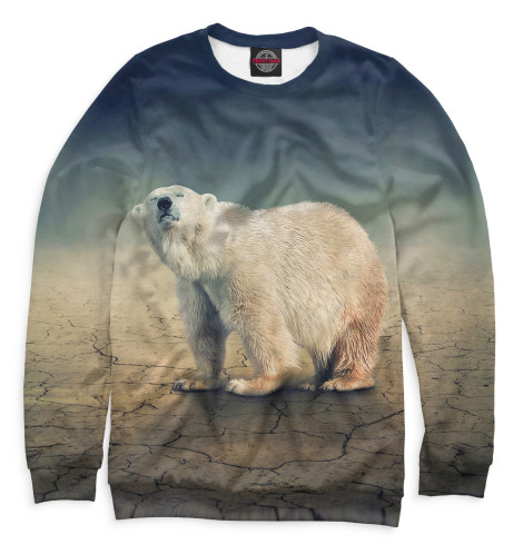 Женский свитшот Медведь
