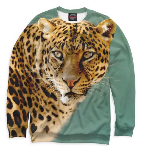Купить Свитшот для мальчиков Леопард HIS-952380-swi-2