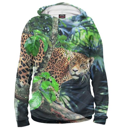 Купить Худи для мальчика Леопард HIS-881353-hud-2