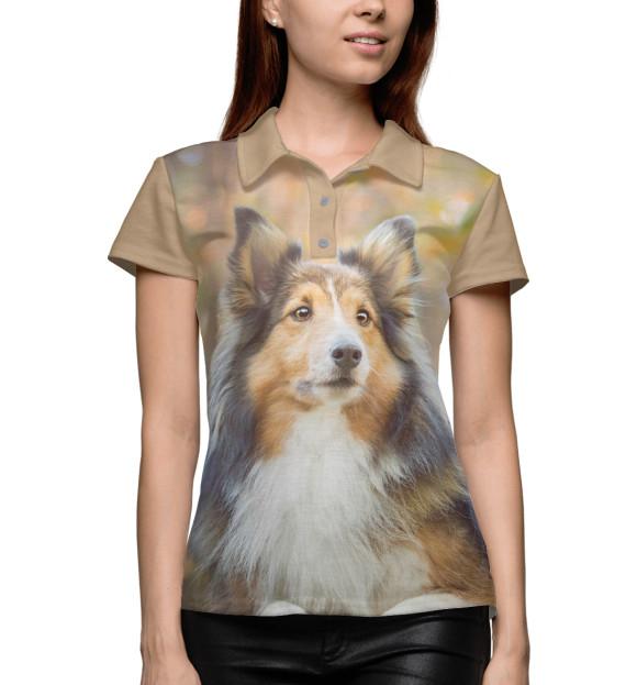 Купить Поло для девочки Колли DOG-512149-pol-1