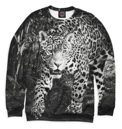 Купить Свитшот для мальчиков Леопард HIS-433397-swi-2