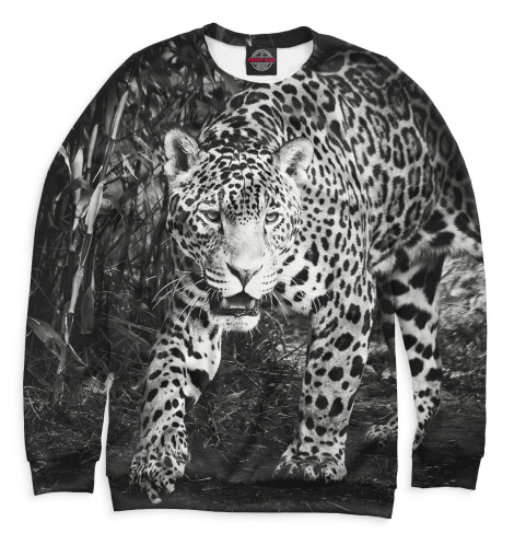Купить Женский свитшот Леопард HIS-433397-swi-1