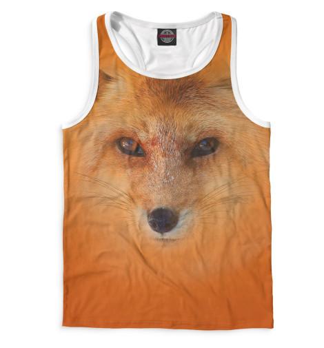 Купить Майка для мальчика Лиса FOX-376028-mayb-2
