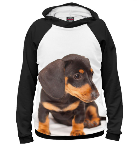 Купить Худи для мальчика Такса DOG-232547-hud-2