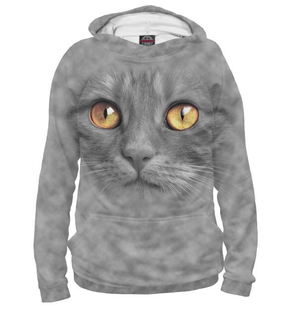 Купить Худи для девочки Кот CAT-914601-hud-1
