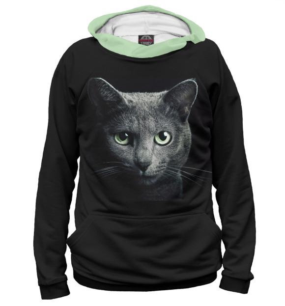 Купить Худи для мальчика Кот CAT-343965-hud-2
