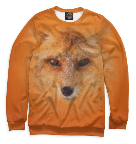 Купить Свитшот для мальчиков Лиса FOX-376028-swi-2