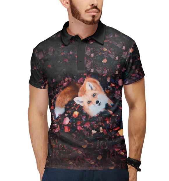 Купить Поло для мальчика Лиса FOX-394872-pol-2